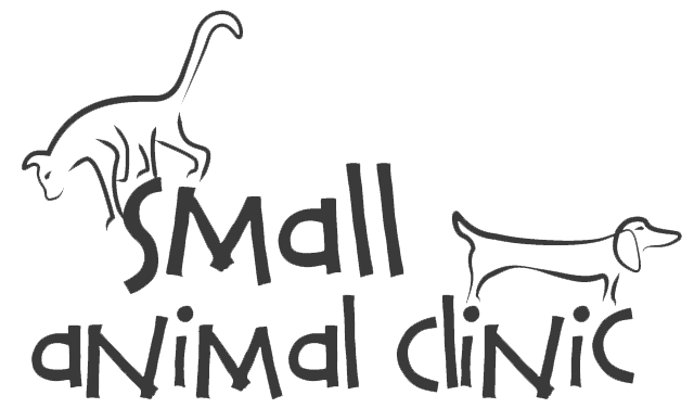 Small Animal Clinic